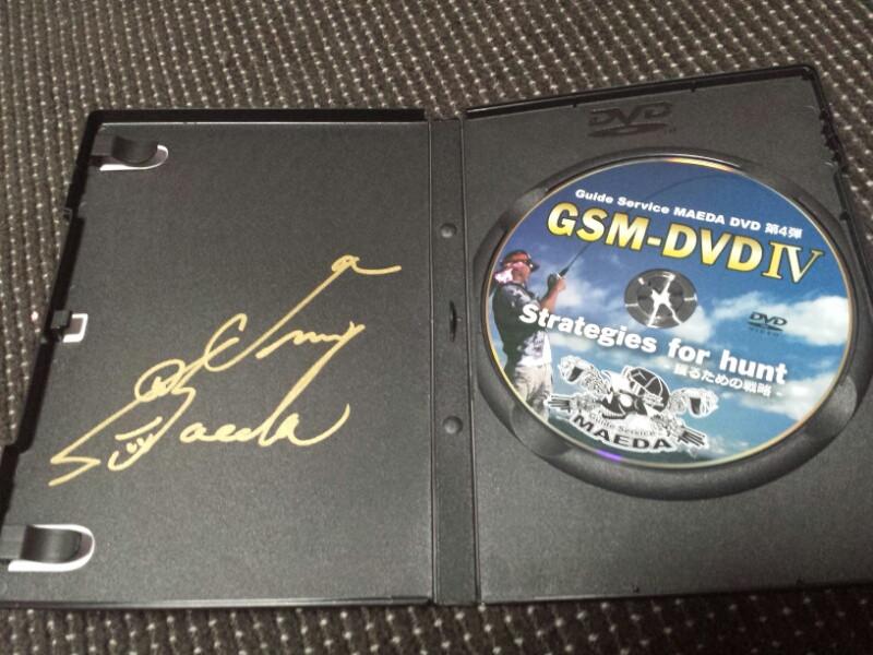 GSM‐DVD Ⅳ